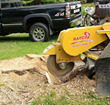 ArborScaper Tree & Landscape provides Tree Services including Stump Grinding in Monroe County NY