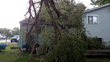 ArborScaper Tree & Landscape offers Complete Tree Services for Storm Damage in Rochester NY