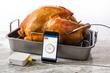 K-Mometer monitoring a holiday turkey!