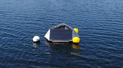Nitrate monitoring for algae control