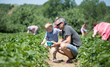 Lyman Orchards Kicks Off Pick Your Own Season with Annual Strawberry Fest