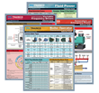 Schoolcraft Publishing Introduces Laminated Reference Guides