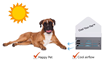 Kickstarter Campaign Announced for The First Portable Air-Conditioning Unit for Pets