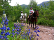 New Travel Package from Antlers at Vail Hotel Immerses Kids in Colorado Mountain Adventure