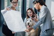 NuVet Leads the Way in Pet-Friendly Workplaces