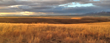 Climate Trust Capital Announces First Grasslands Investment