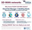 Teldat SD-WAN Network Architechture