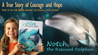 Viral Video of Wild Dolphin Rescue Inspires New Children's Book by Martina Wing
