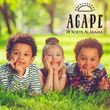 Higdon Insurance Group and AGAPE of North Alabama Launch Charity Drive to Assist Orphaned and Neglected Children in the Region