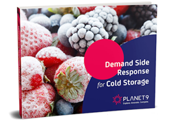 Demand Side Response for Cold Storage