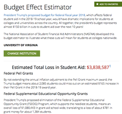 budget effect estimator