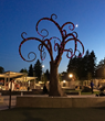 Night time view of the Whimsical Wisdom Tree after the grand opening ceremony of the new Inspiration Playground.