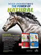 Manna Pro Captures Five Awards for Excellence in Equine Marketing