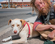 Feeding Pets of the Homeless Leads Eighth National Give a Dog a Bone Pet Food Drive