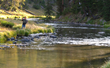 Fishing in the backcountry rivers and lakes at Brooks Lake Lodge & Spa is a highly popular activity for guests looking to connect with nature.