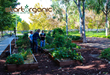 StartOrganic offers site selection to garden design, weekly gardening lessons, plant selection, organic pest control as well as monthly workshops.