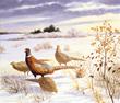 Pheasants by Arthur Singer