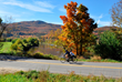 Bicyclists taking in Vermont's finest fall foliage on a Sojourn bike tour