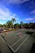 Tennis at Ibis