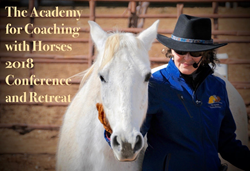 Coaching with Horses Equine Facilitated Learning