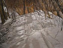 "Image of Linda Gross Brown's ""Footsteps #16"""