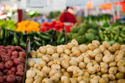 Indoor Farmer's Market at Westfield Mall in Palm Desert