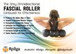 Omnidirectional Foam Roller