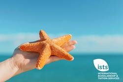 Starfish Campaign