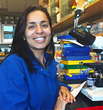 UC Davis researchers identify how dietary riber helps the intestines maintain health