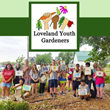 Swanty Insurance Group Announces Community Charity Event Benefitting the Regional Nonprofit Loveland Youth Garden