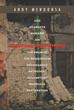 Andy Mendonsa Releases 'Spiritual Widowhood'