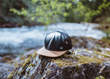 Planting for the Future: PLM Success for Centric Software and tentree
