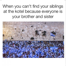 Meme with an image of hundreds of people wearing Israeli flags at the Western Wall, with the description: when you can't find your siblings at the kotel because everyone is your brother and sister