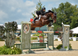 American Equus welcomes Victoria Colvin to the team!