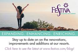 Festiva: Elevating the Journey