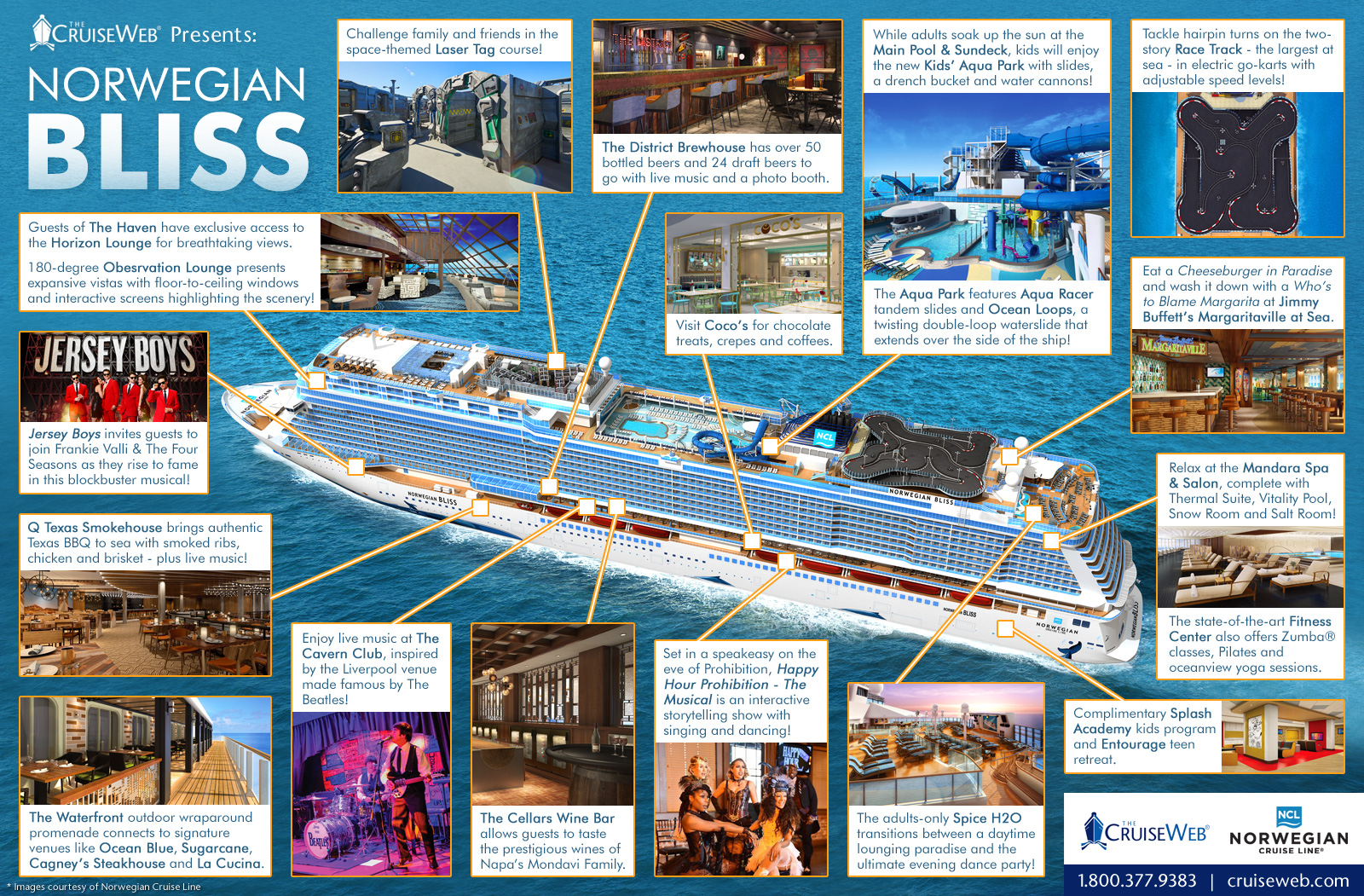 The Cruise Web S Latest Infographic Explores Norwegian
