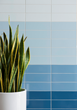Walker Zanger debuts utilitarian tile Architek in an on-trend color palette