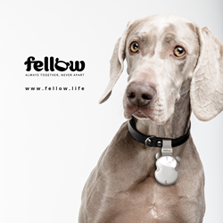 Fellow – The First Smart Electronic Leash for Dogs based on Bluetooth® 5.0