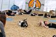 Goat Yoga Group