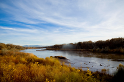Rio Grande in New Mexico