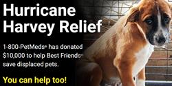 Hurricane Harvey Relief - 1-800-PetMeds