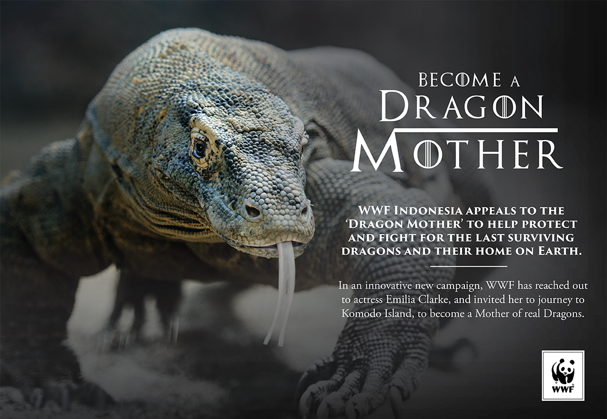 wwf indonesia appeals to the u0027dragon mother u0027 emilia clarke to help