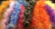 Featherless boa - Picture Perfect Photo Booth Rental
