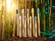 Humble Brush Showcases Sustainable Product at Natural Products Expo East 2017