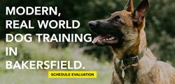 Bakersfield Dog Training