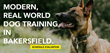Bakersfield K9 Solutions Announces The Launch Of Their New Interactive Website