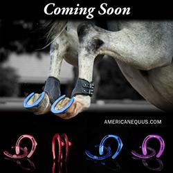 American Equus MonoBloc Horseshoes