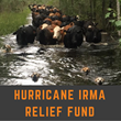 Florida Farm Bureau Donates to Families Here and in Texas