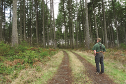 Forest owners use Farm Bill programs to help with conservation