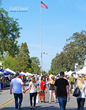Los Olivos Day in the Country Oct 21, 2017